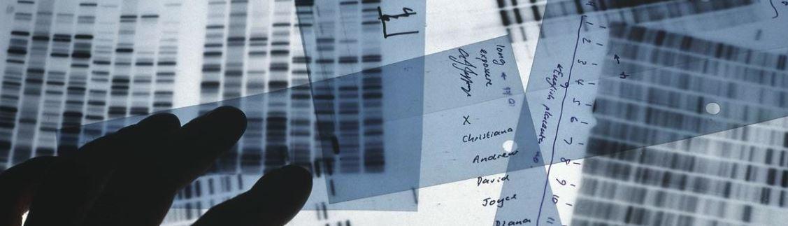 دیگر هیچکس نمیتواند خود را از کارآگاهان ژنتیکی مخفی نگه دارد